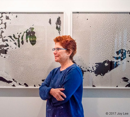 Diane Burko shifts to barrier reefs